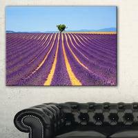 Lonely Uphill Tree in Lavender Field - Oversized Landscape Wall Art Print - Blue