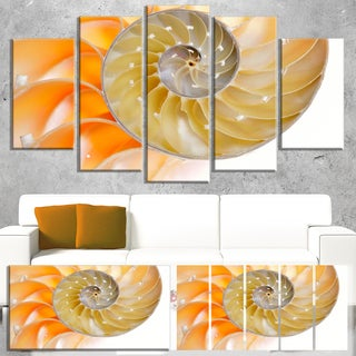 Isolated Nautilus Shell - Abstract Art Canvas Art Print