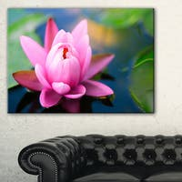 Large Lotus Flower in the Pond - Large Floral Canvas Art Print