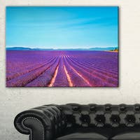 Lavender Flowers and Clear Sky - Oversized Landscape Wall Art Print - Blue