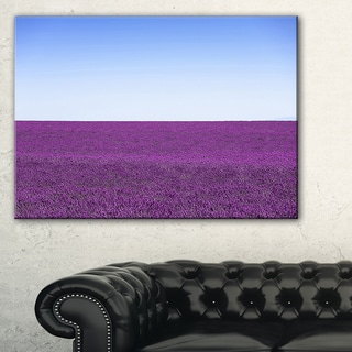 Lavender Flowers with Blue Horizon - Oversized Landscape Wall Art Print