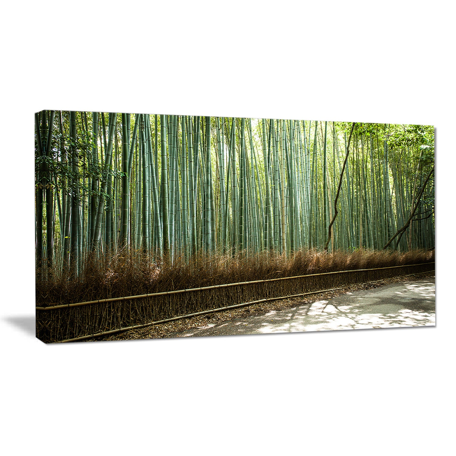 Beautiful-View-of-Bamboo-Forest-Forest-Canvas-Wall-Art-Mini thumbnail 7