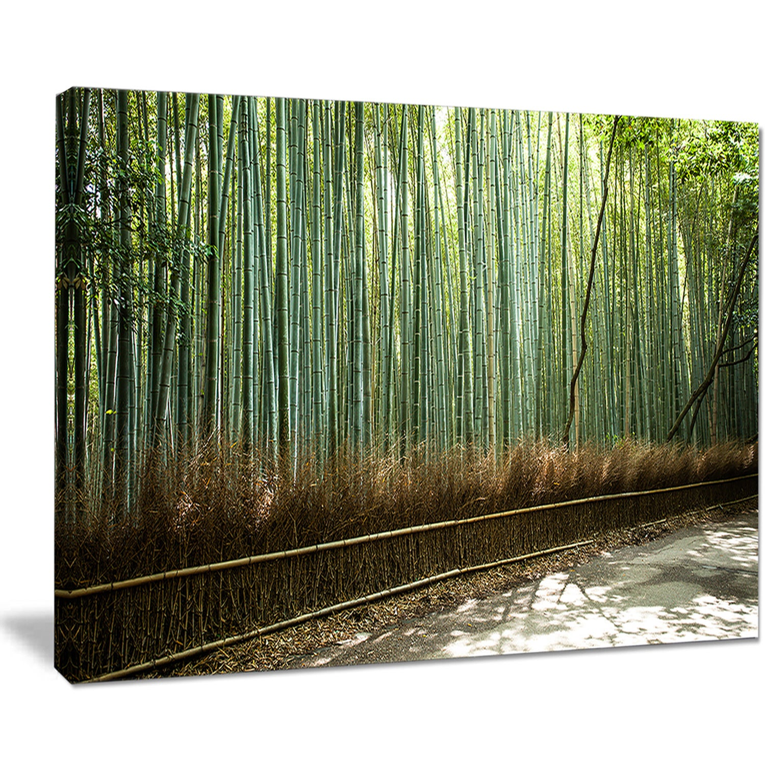 Beautiful-View-of-Bamboo-Forest-Forest-Canvas-Wall-Art-Mini thumbnail 8