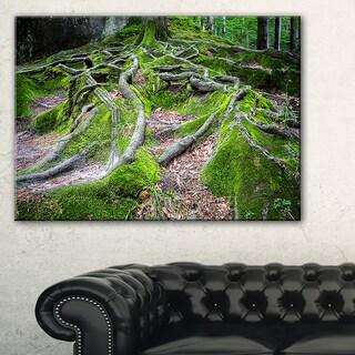 Green Wild Deep Moss Forest - Landscape Art Print Canvas
