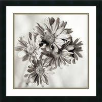 Framed Art Print 'Florison #40 Daisies' by Alan Blaustein 22 x 22-inch