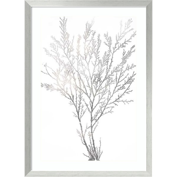 Shop Framed Art Print Silver Foil Algae I Metallic Print By Jennifer Goldberger 24 X