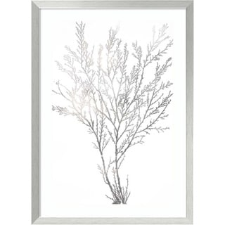 Framed Art Print 'Silver Foil Algae I Metallic Print' by Jennifer Goldberger 24 x 33-inch
