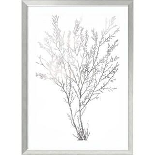 Framed Art Print 'Silver Foil Algae I Metallic Print' by Jennifer Goldberger 24 x 33-inch