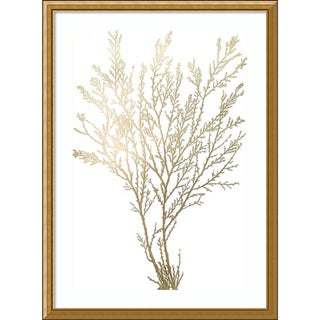 Framed Art Print 'Gold Foil Algae I Metallic Print' by Jennifer Goldberger 24 x 33-inch