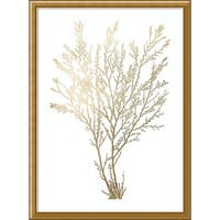 Framed Art Print 'Gold Foil Algae I Metallic Print' by Jennifer Goldberger 24 x 33-inch