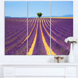 Lonely Uphill Tree in Lavender Field - Oversized Landscape Wall Art Print