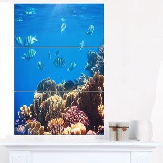Bright Blue Waters and Coral Fish - Large Seashore Canvas Print