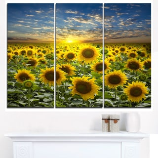 Field of Blooming Sunflowers - Large Flower Canvas Wall Art