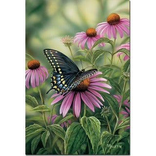 WGI Gallery 'Black Swallowtail Butterfly' Wall Art Printed on Wood