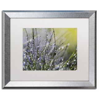 Beata Czyzowska Young 'Spring Morning' Matted Framed Art