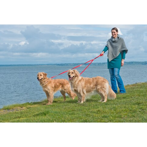 FurHaven No-tangle 2-dog Pet Leash/Lead