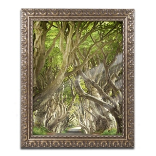 Philippe Sainte-Laudy 'The Way It Is' Ornate Framed Art