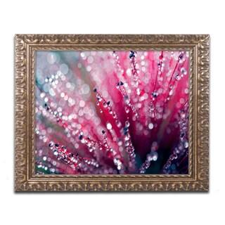 Beata Czyzowska Young 'Symphony in Pink' Ornate Framed Art