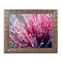 Beata Czyzowska Young 'Symphony in Pink' Ornate Framed Art