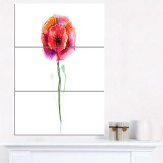 Isolated Poppy Flower in Full Bloom - Large Flower Canvas Wall Art