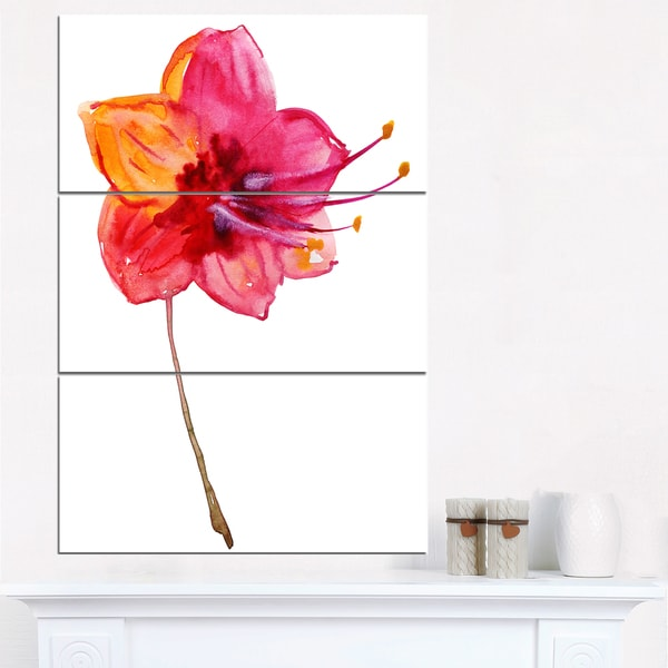 Beautiful Dual-toned Star Flower - Large Flower Canvas Wall Art - Multi-color