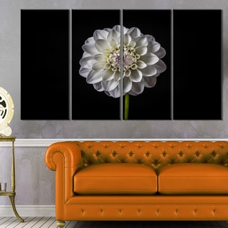 Isolated Dahlia Flower in Black - Floral Canvas Art Print