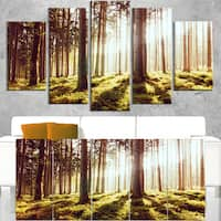 Early Morning Shadows of Forest - Large Forest Wall Art Canvas - Red