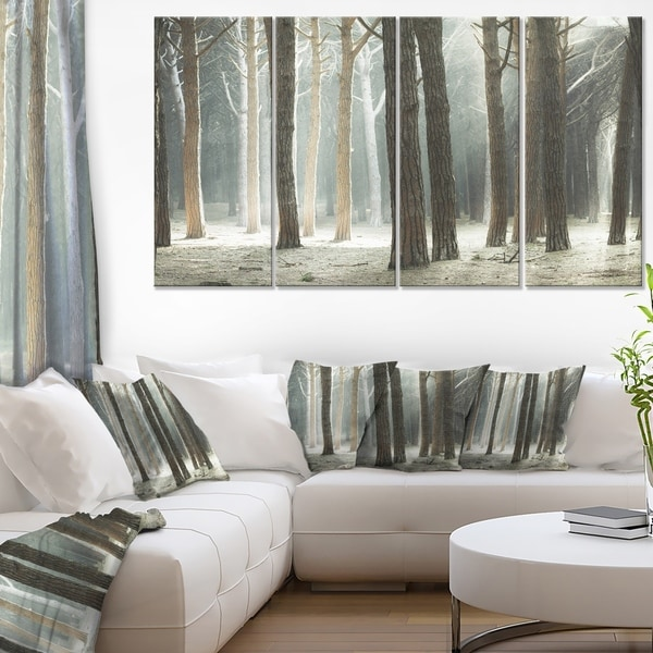 maritime pine tree forest with rays oversized forest canvas art