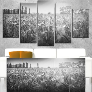 Black and White Wheat Field - Landscape Wall Art Canvas Print