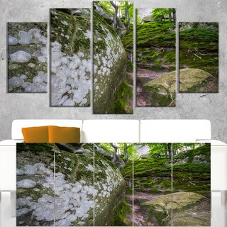 Large Rocks in Deep Moss Forest - Landscape Art Print Canvas