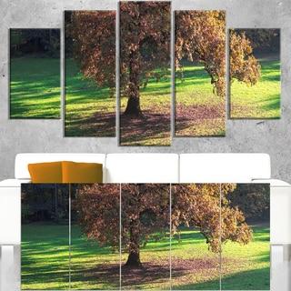 Lonely Beautiful Autumn Tree - Landscape Wall Art Canvas Print