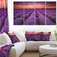 Red Sunset Over Lavender Field - Extra Large Wall Art Landscape