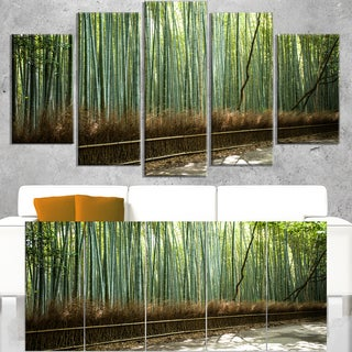 Beautiful View of Bamboo Forest - Forest Canvas Wall Art Print
