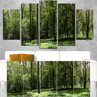 Wild Green Forest Panorama - Oversized Forest Canvas Artwork