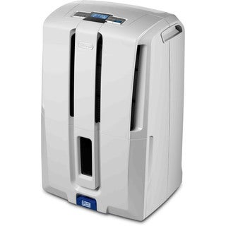 DeLonghi 70 pt. Dehumidifier with Pump