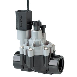 Rain Bird CPF100 1-inch In Line Valve With Flow Control