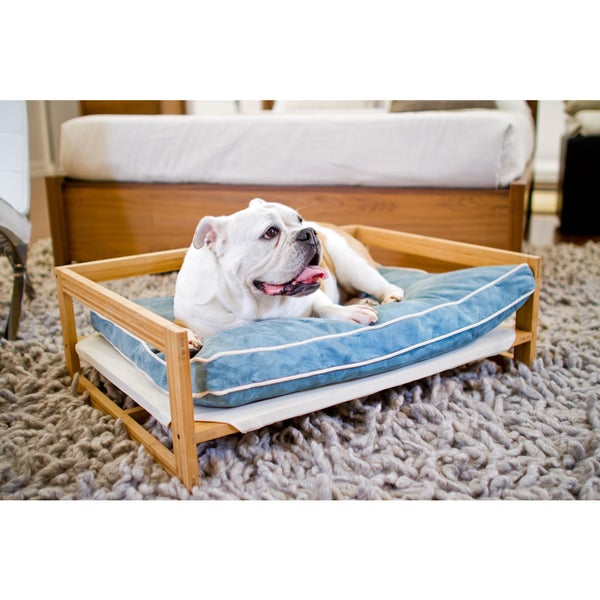 Shop Pet Lounge Bamboo Amp Orthopedic Dog Bed And Couch