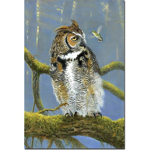 WGI Gallery 'Fearless Owl & Hummingbird' Wall Art Printed on Wood - Green/Multi