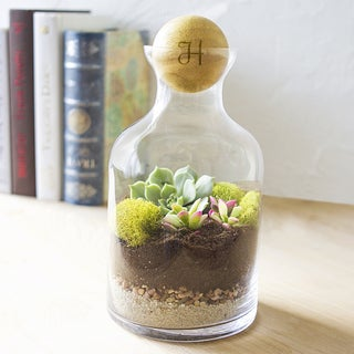 Personalized 56-ounce Clear Glass Terrarium with Wood Ball