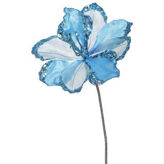 20-inch Sky Blue Amaryllis with 9-inch Flower (Pack of 3)