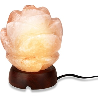 Zennery Himalayan Salt Rose Shaped Lamp