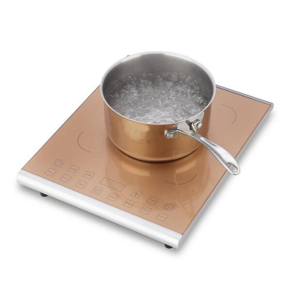 Fagor Pro Carmel 1800-watt Induction Cooktop