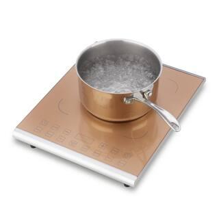 Fagor Pro Carmel 1800-watt Induction Cooktop|https://ak1.ostkcdn.com/images/products/12350771/P19179031.jpg?impolicy=medium