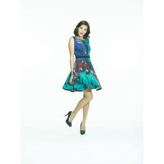 Amelia Printed Ponte A-line Dress