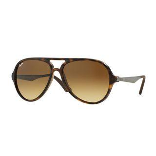 Ray-Ban Men's RB4235 Tortoise Plastic Pilot Sunglasses
