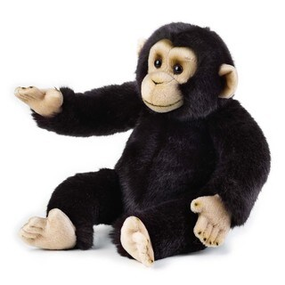 National Geographic Chimpanzee Plush