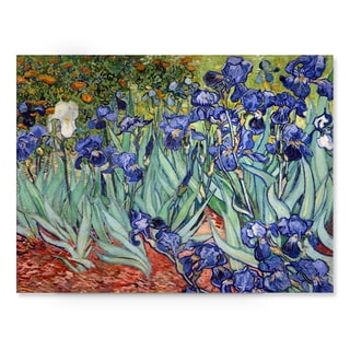 Vincent van Gogh 'Iries' Canvas Wall Art