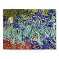 Vincent van Gogh 'Iries' Canvas Wall Art