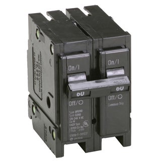 "Eaton BR260 2"" 60 Amp Double Pole Interchangeable Circuit Breaker"