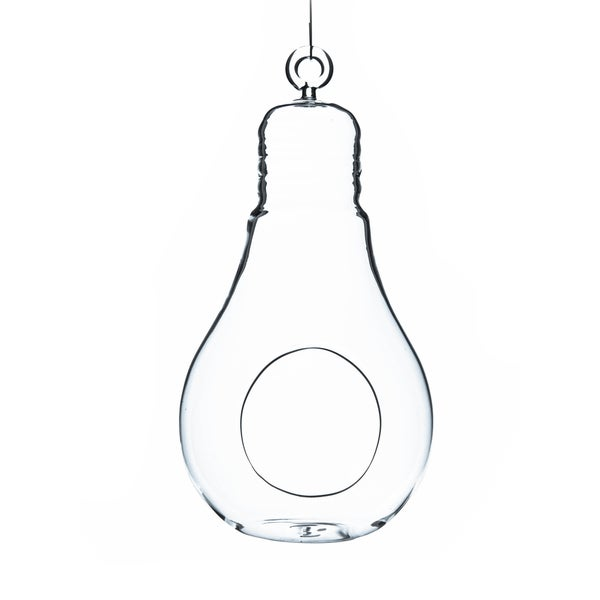 Clear Glass 7-inch Bulb-shaped Hanging Terrarium Vase/Candle Holder